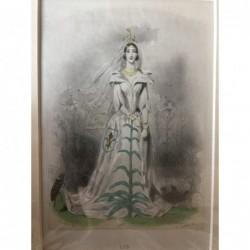 Lilie - Stahlstich, 1850