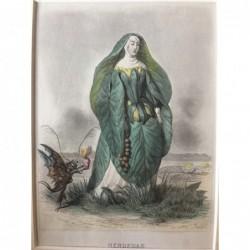 Seerose - Stahlstich, 1850