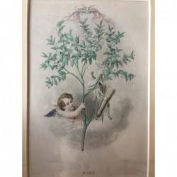 Myrte - Stahlstich, 1850